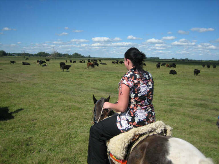 Janeke riding through the cattle